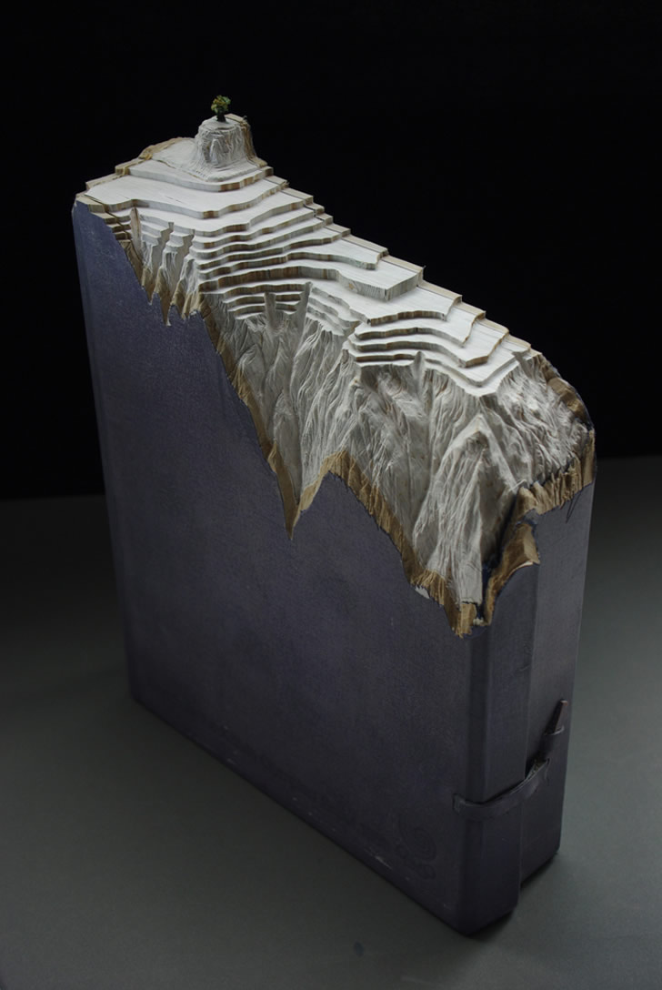 Book Sculpture by Guy Laramee (1)