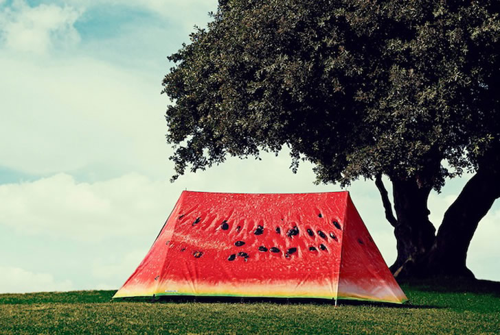 Tent by FieldCandy (6)
