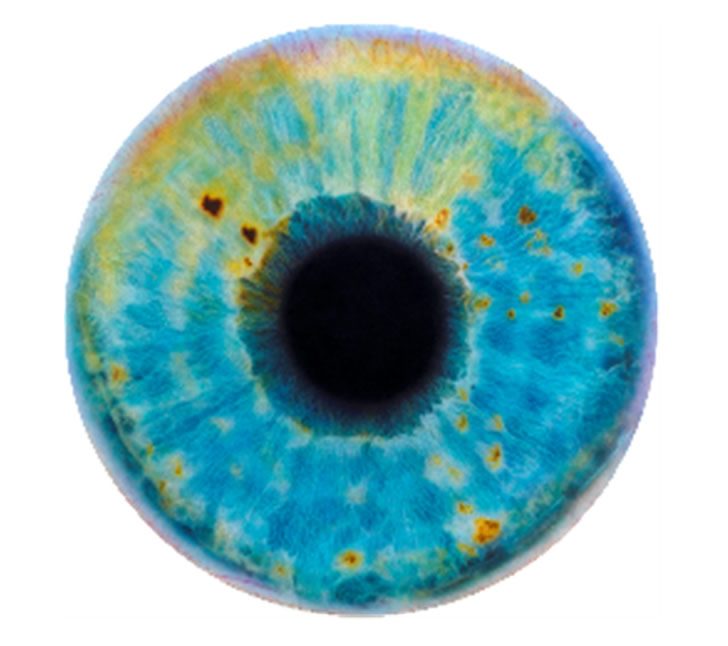 Eye painting by Marc Quinn (1)