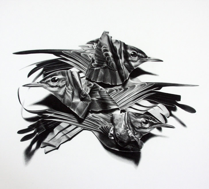 Drawing by Christina Empedocles (4)