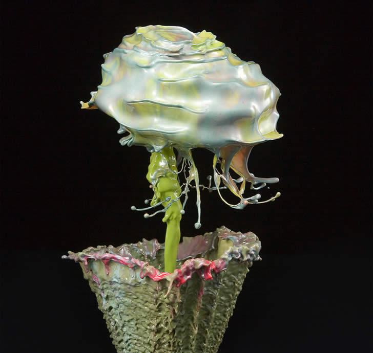 High speed floral photos by Jack Long (3)