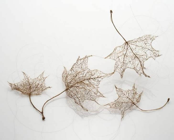 Human hair leaf by Jenine Shereos (4)