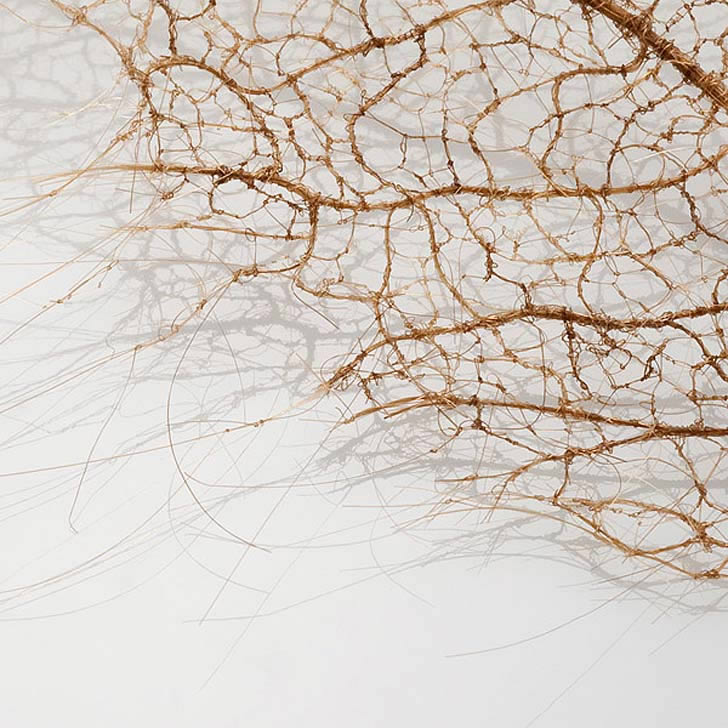 Human hair leaf by Jenine Shereos (1)