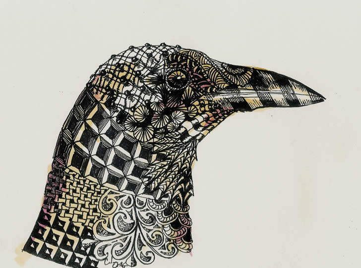 Patterned Animals Scene60 Extraordinary Patterned Animals