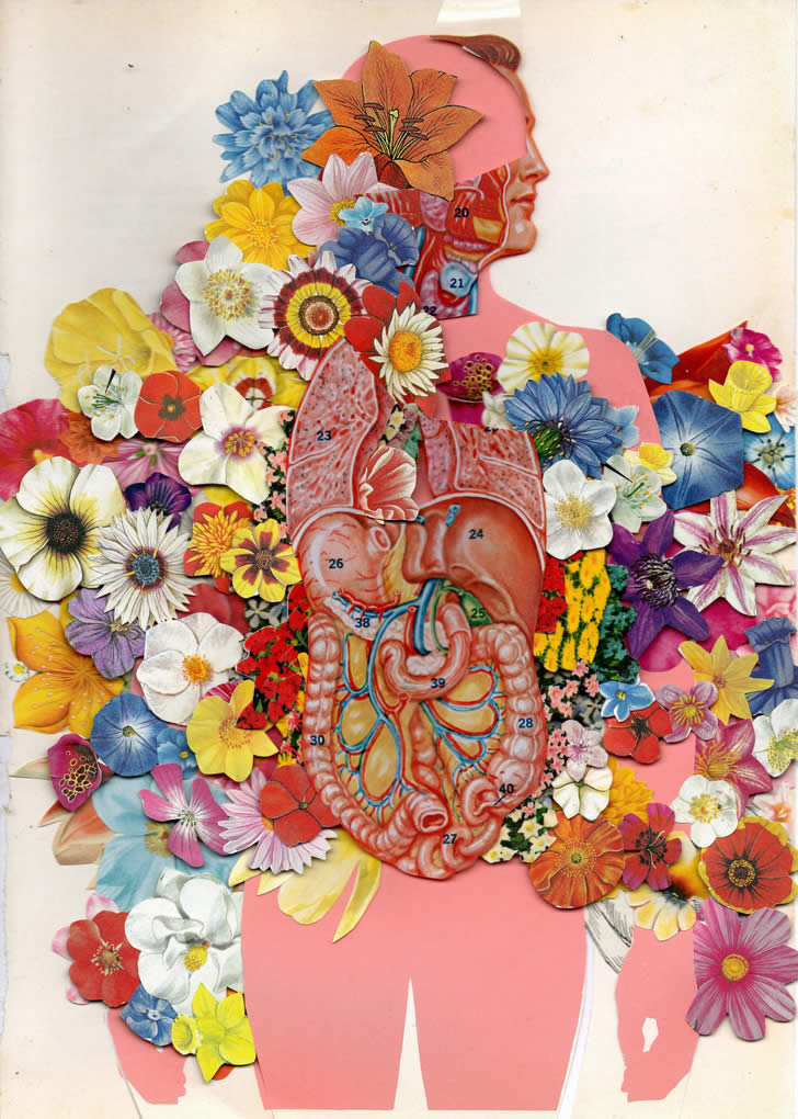Flowered Anatomy
