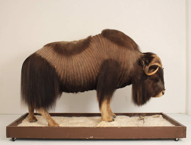 Hairy Sculptures