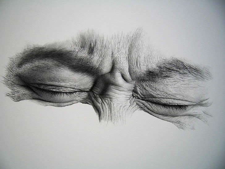 Realistic drawing by Kim Ji Hoon (4)