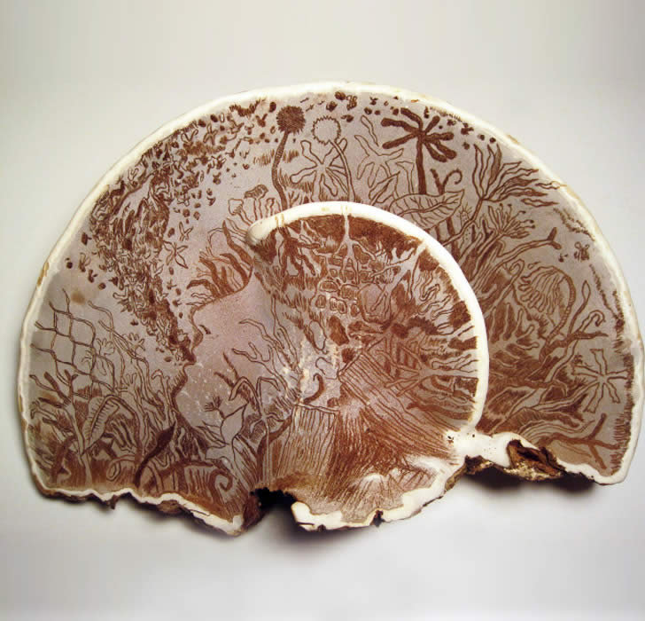 Illustrating on Giant Mushrooms
