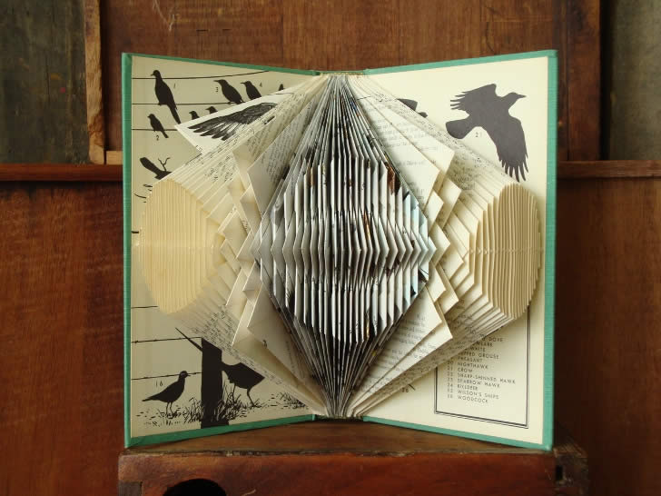 Paper folding art from exploded library