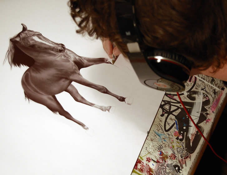Realistic horse drawing by James Myln