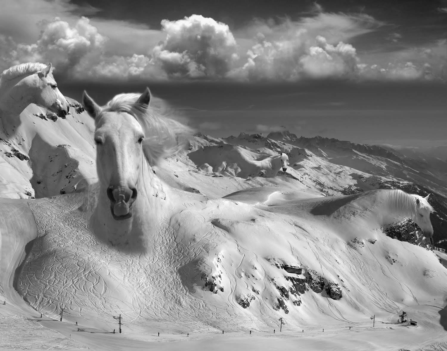 horse mountain, thomas barbey