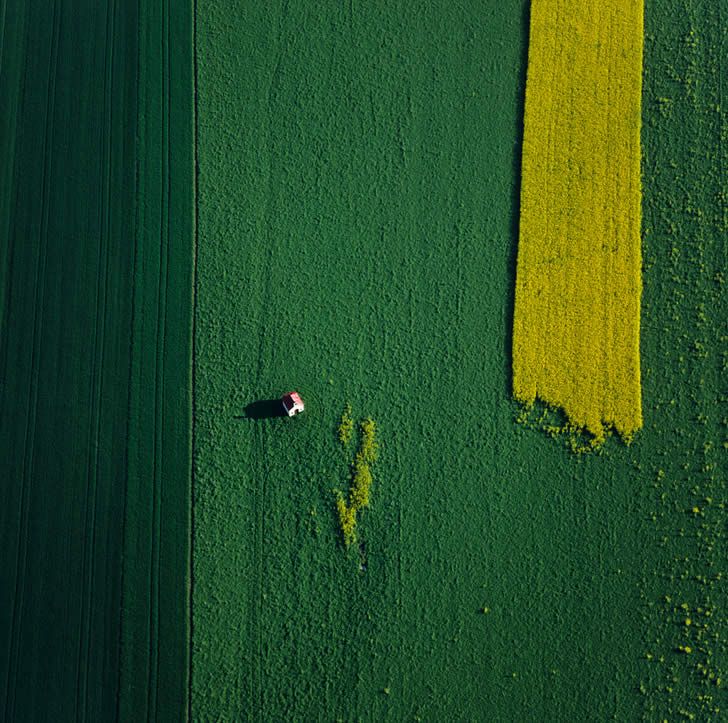 Green and yellow landscape by Klaus Leidorf