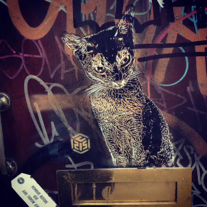Beautiful cat graffiti by C215