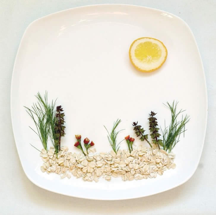 Landscape made from rice, herbs and lemon by Hong yi