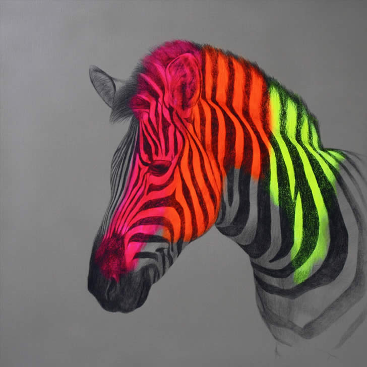 Neon Zebra by Louise McNaught