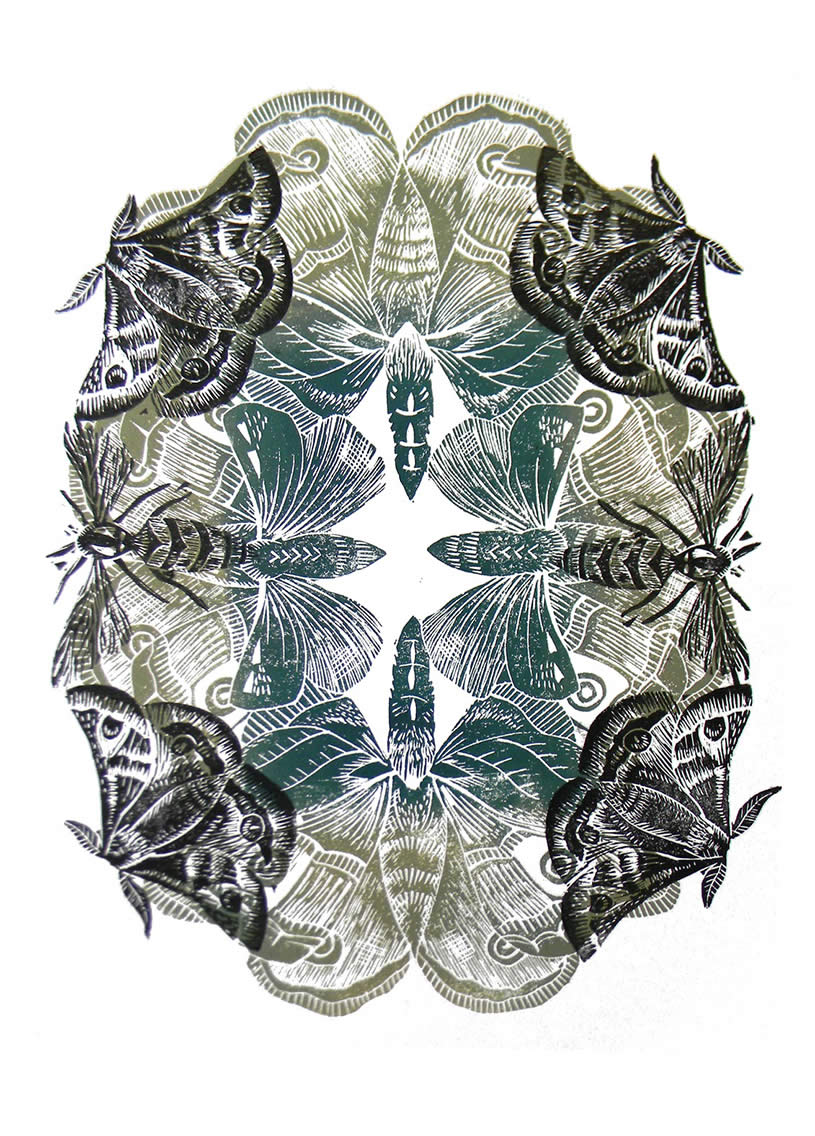 Insects Lino print by Amanda Colville