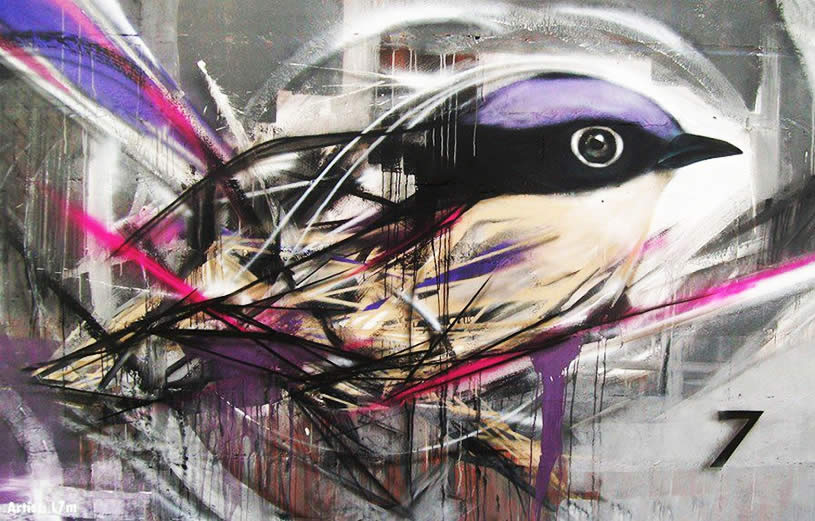 Purple and black bird graffiti by l7m
