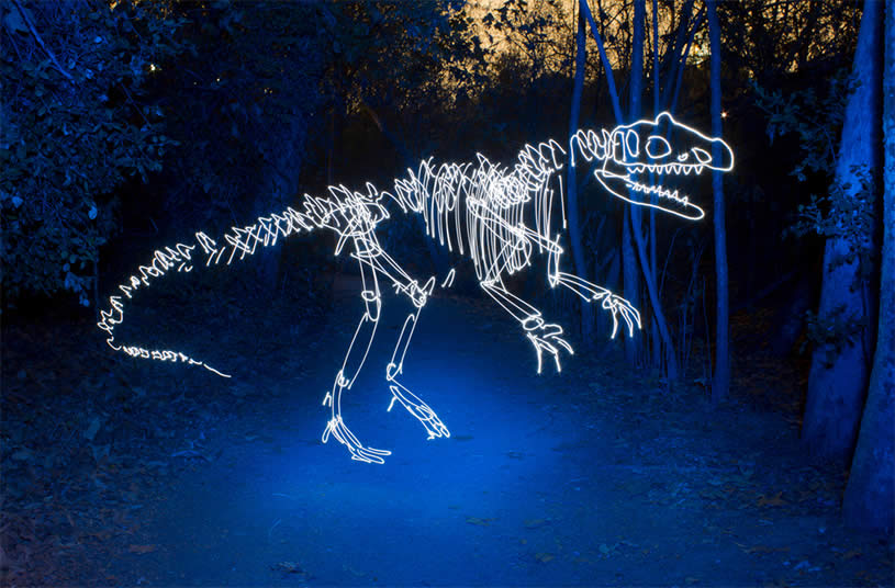T-Rex Dinosaur light painting by Darius Twin