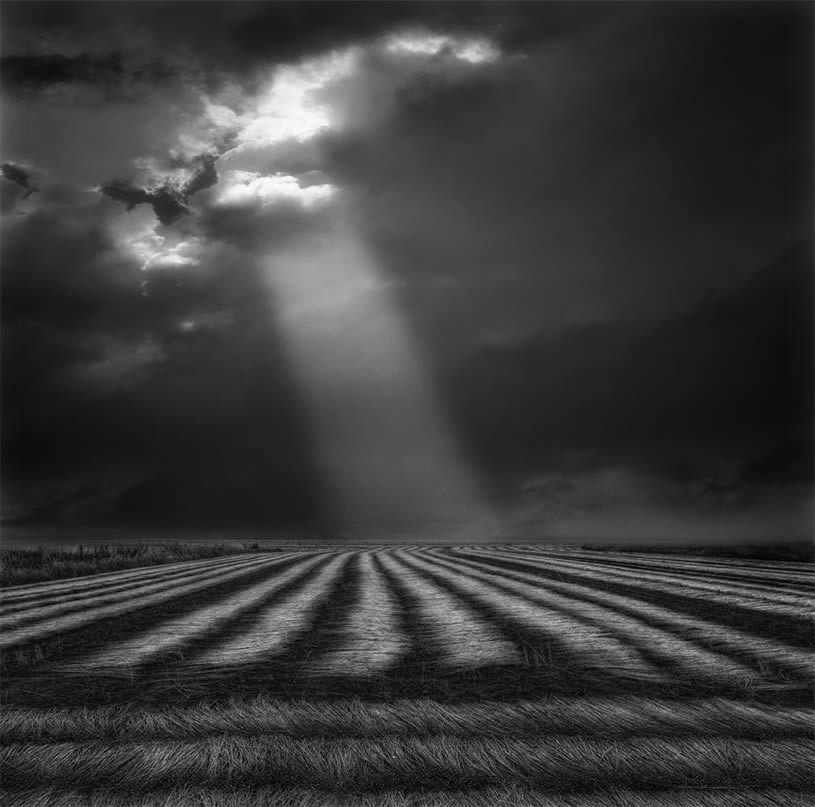 Light on striped field by Yvette depaepe