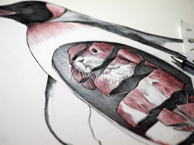 Zoom of Rabbit in Penguin's belly by Jaume Montserrat