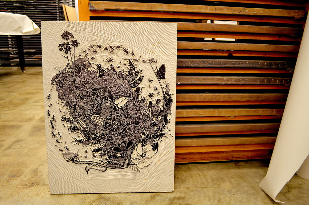 Decline, a linocut and monotype print based on endangered species found in California. 2