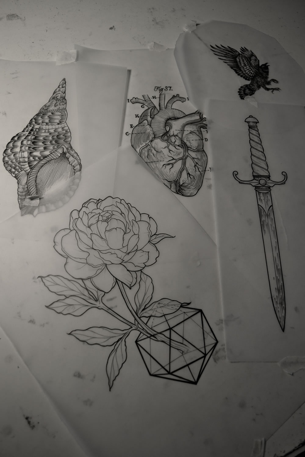 Tattoo drawings by Thomas Cardiff