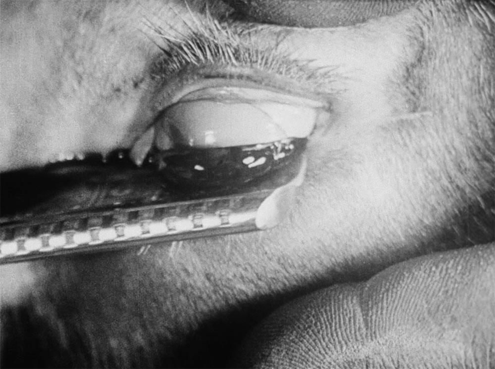 "mages at top from ""Un Chien Andalou"" (1929)."