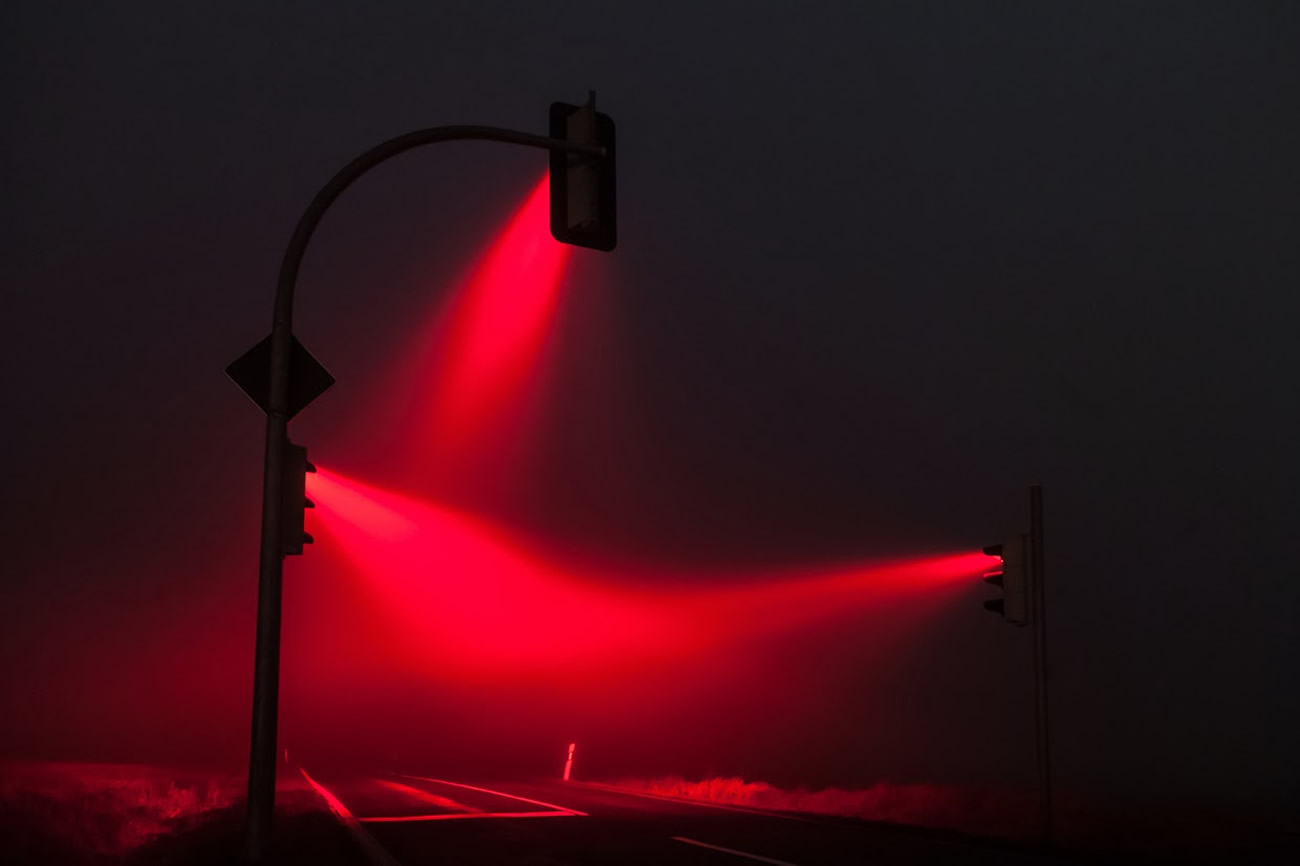 lucas zimmerman red light display