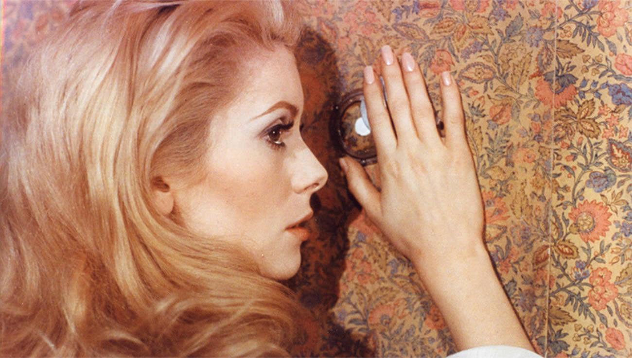 catherine deneuve belle de jour french cinema, touching wallpaper