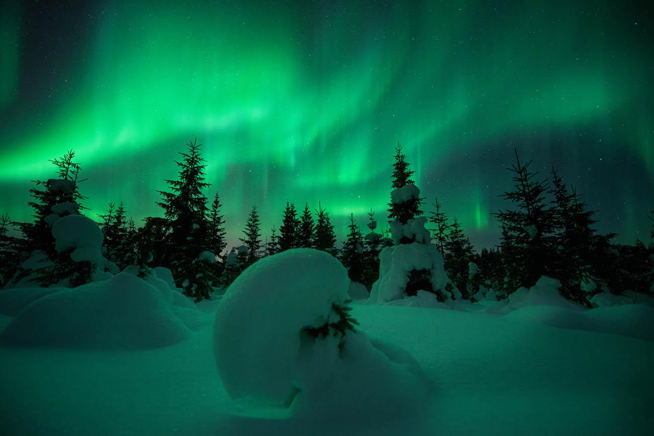 arild heitmann snow green