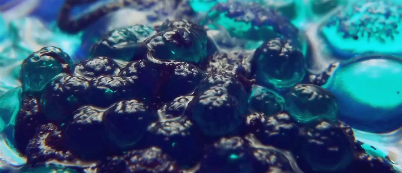 blue cells, gel, from upstream color movie