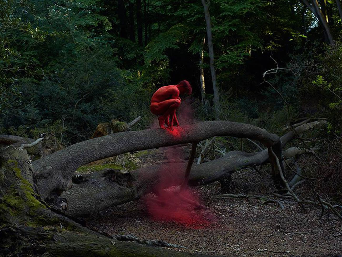 red dust on man, sitting on tree trunk by by bertil nilsson