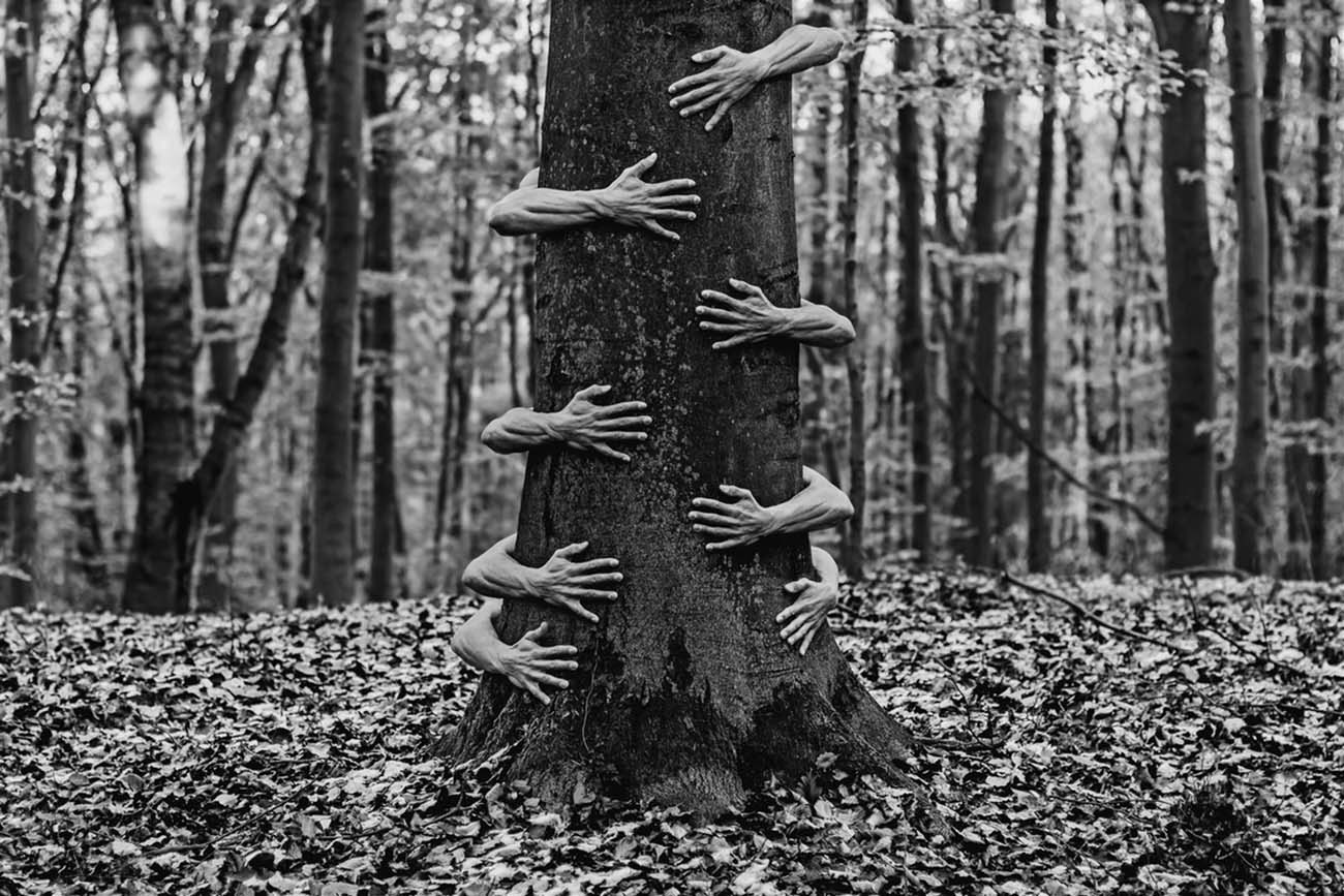 ronny engelmann woods hands black and white