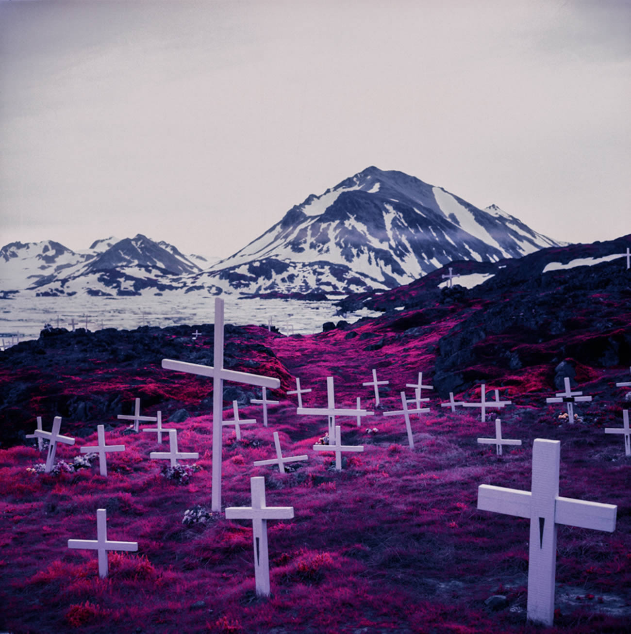 introspective infared photography by  David Zvereff 8