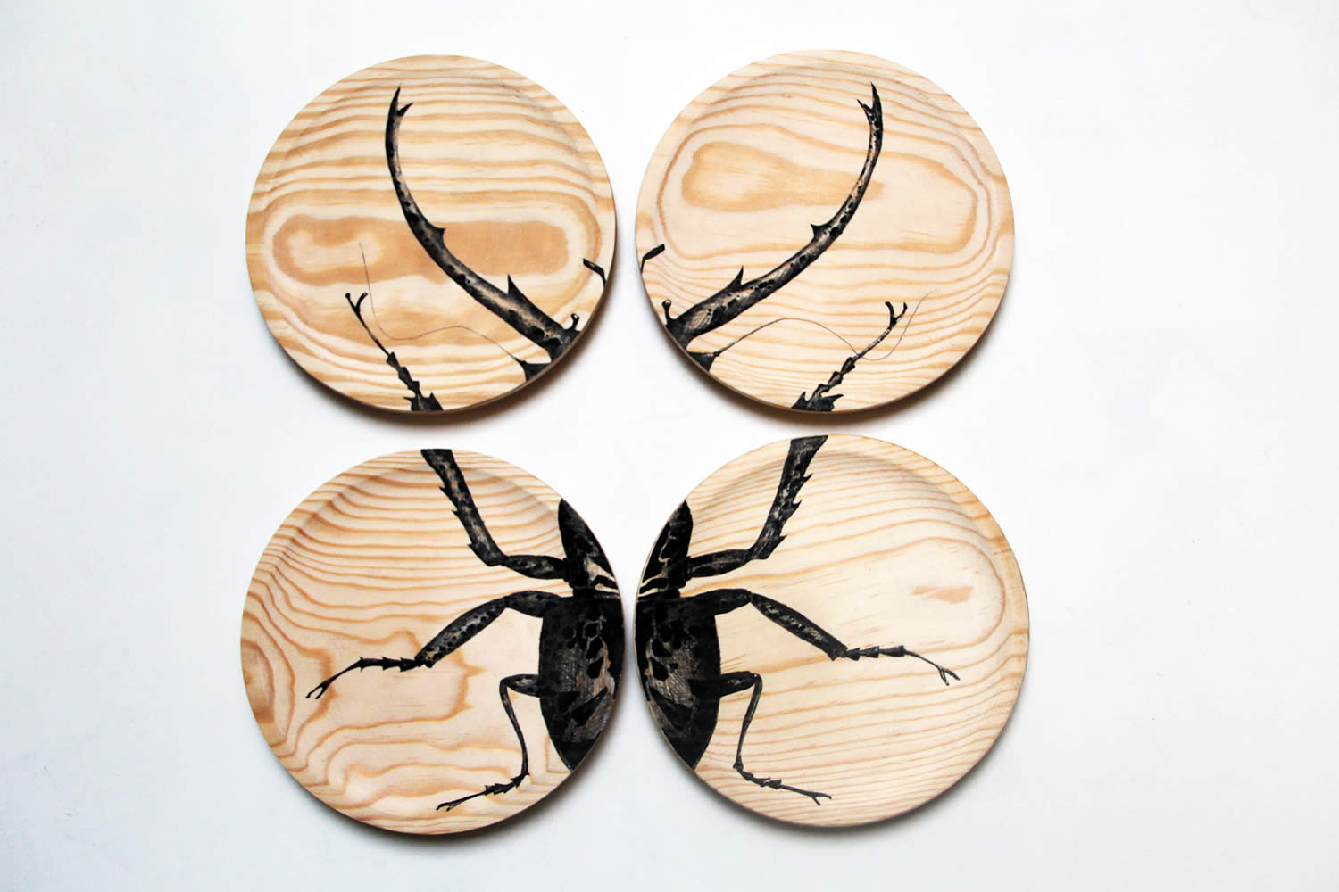 insect wood four pieces, wood by raul gutierrez