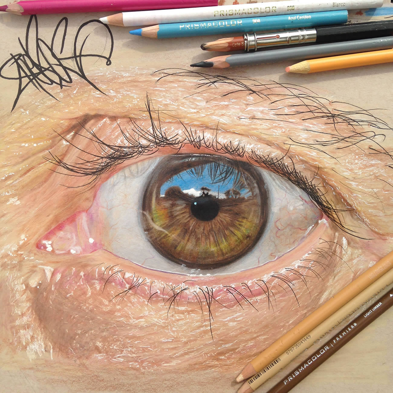 brown eye drawing by Redosking