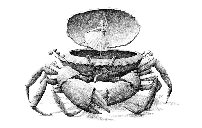 balerina crab box, drawing by redmer hoekstra