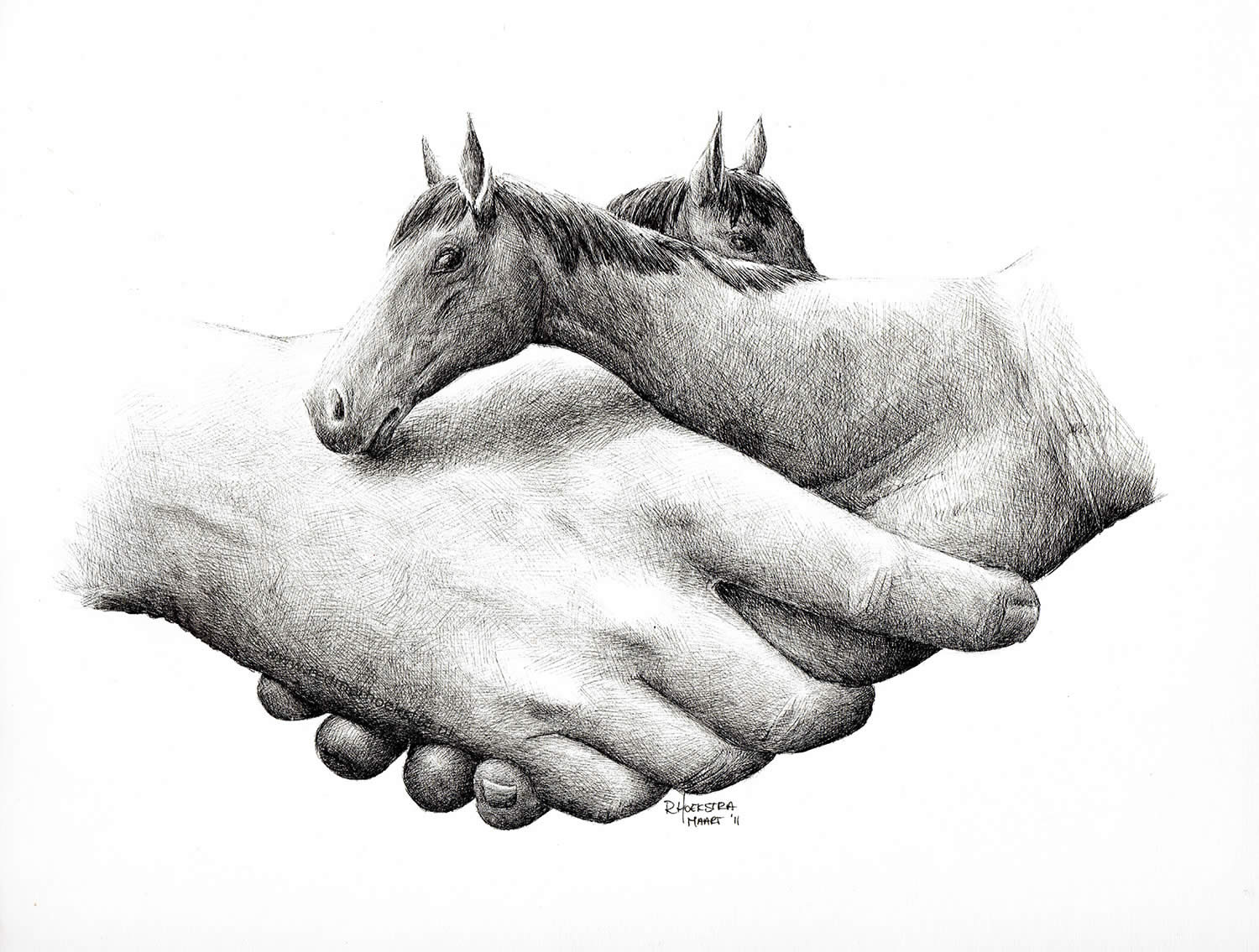 horse hand shake by redmer hoekstra
