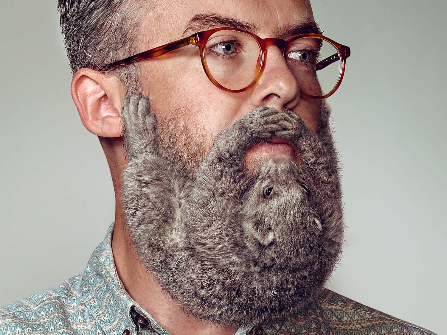 grey haired beard,Electric Art / Schick NZ. By Sharpe + Associates Inc.