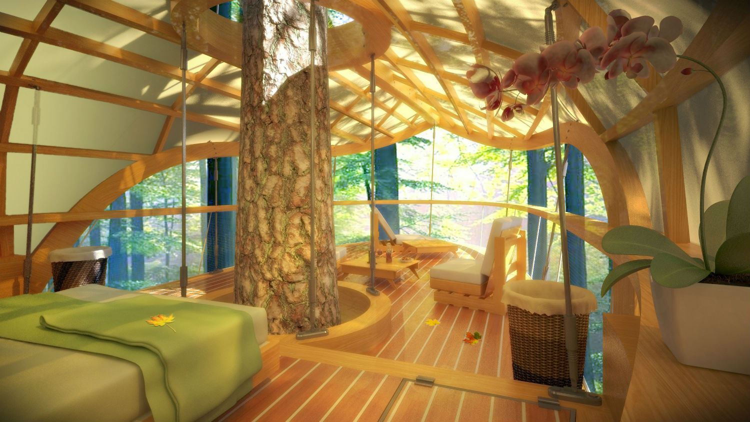 farrow architects design tree house interior