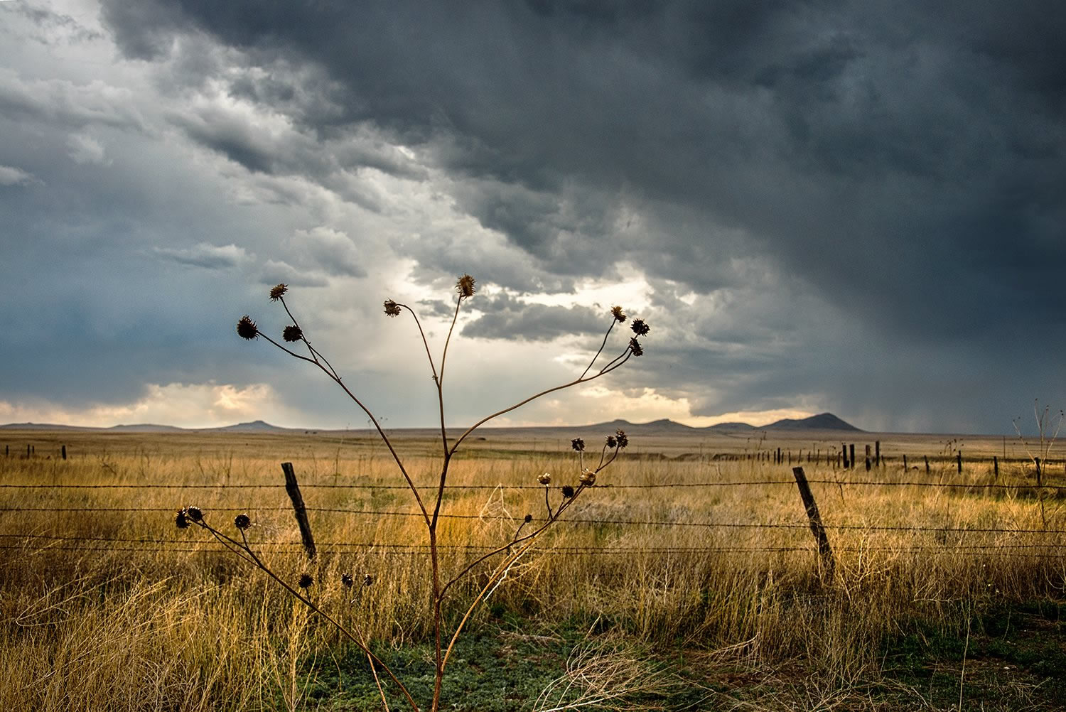 fields and clouds photo by Jody Miller