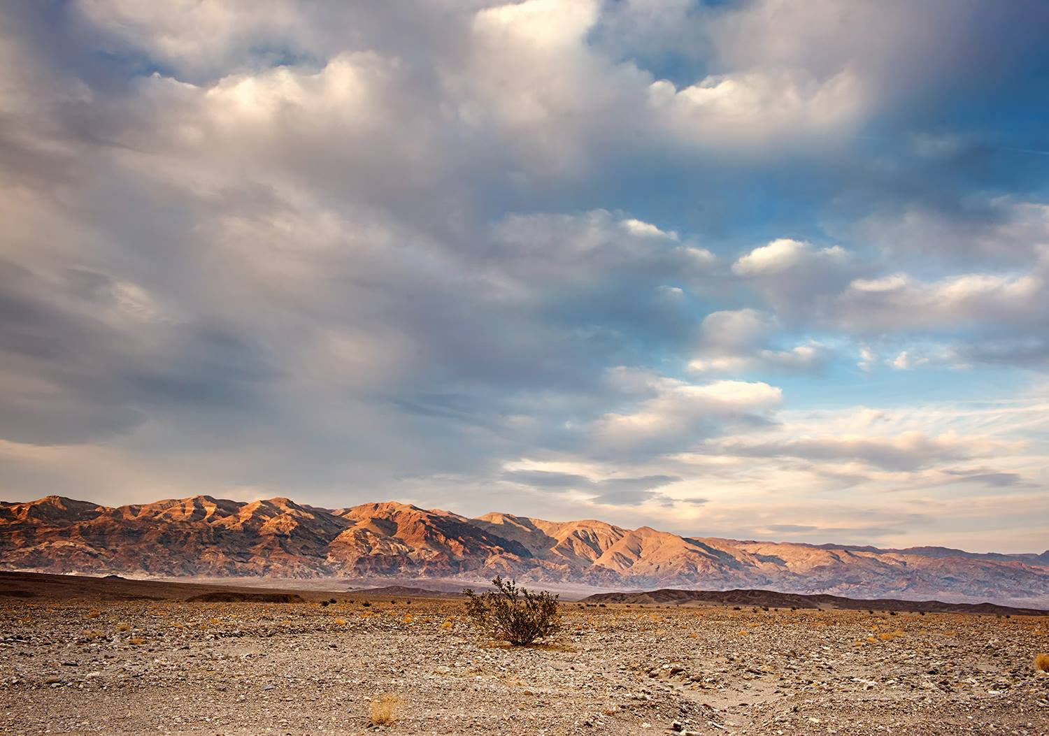 desert and mountains by jody miller