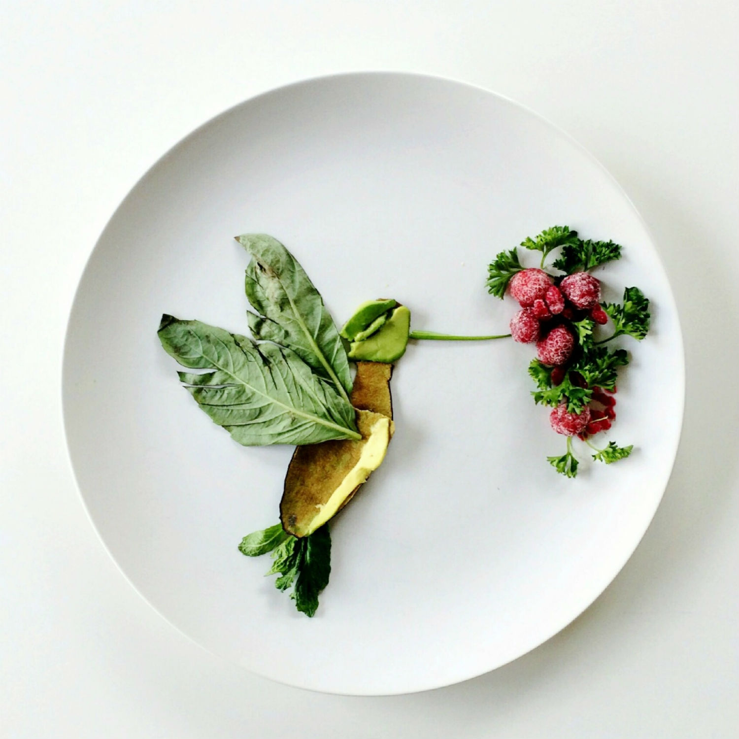 lauren purnell hummingbird art food