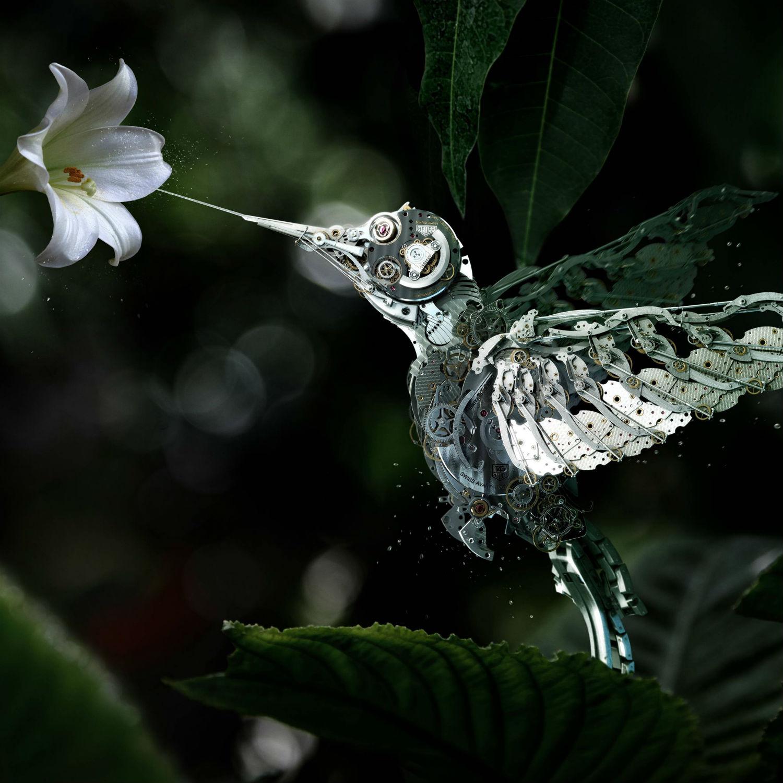 mecanique générale 3d hummingbird métal ad