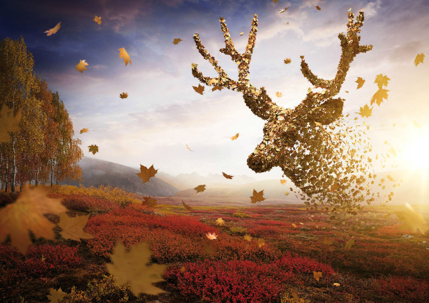 deer autumn digital viaframe