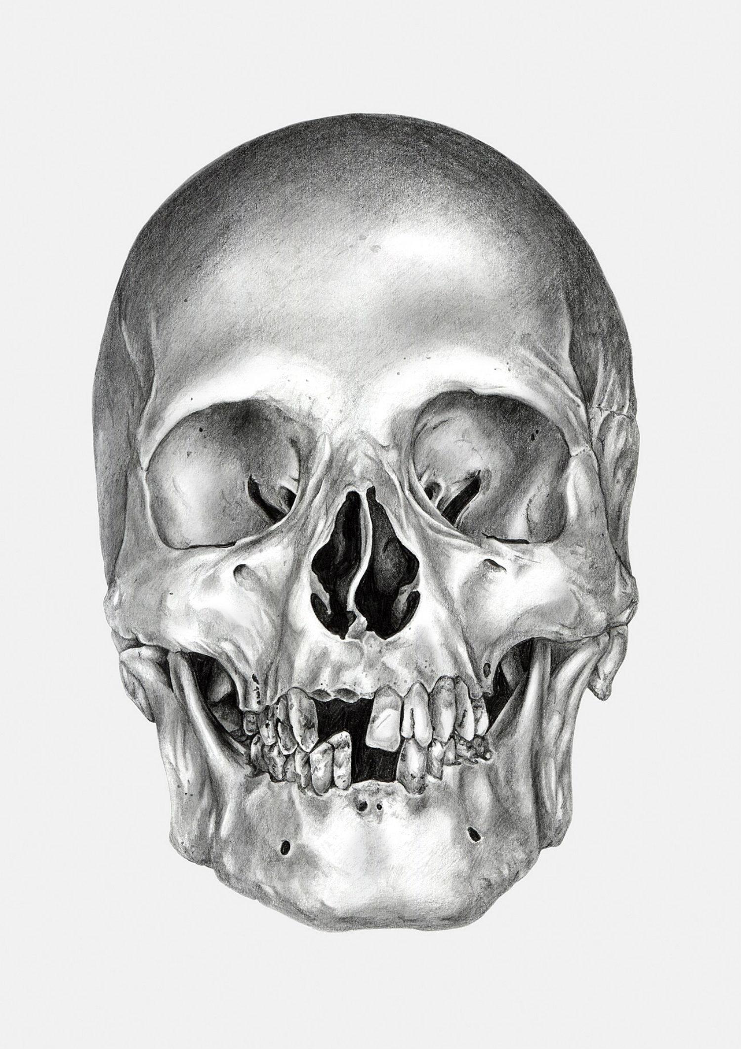 Ivan Kamargio illustration black white