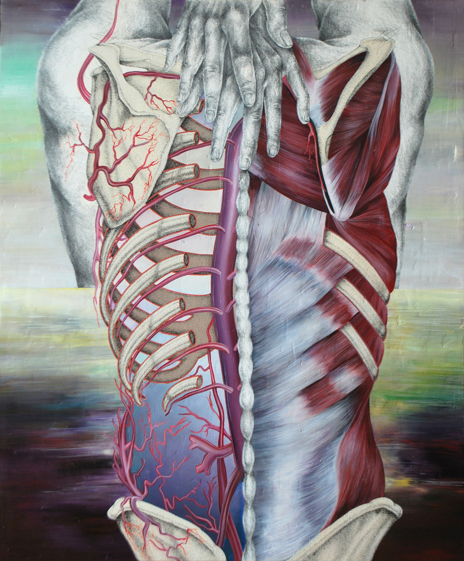 Giselle Vitali illustration body human medical