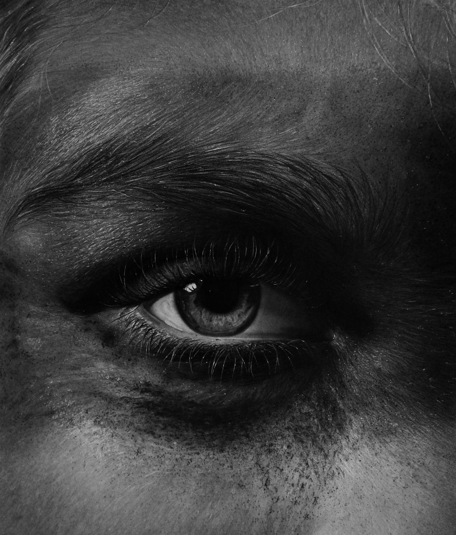 eye close up kit king drawing photo realism black white