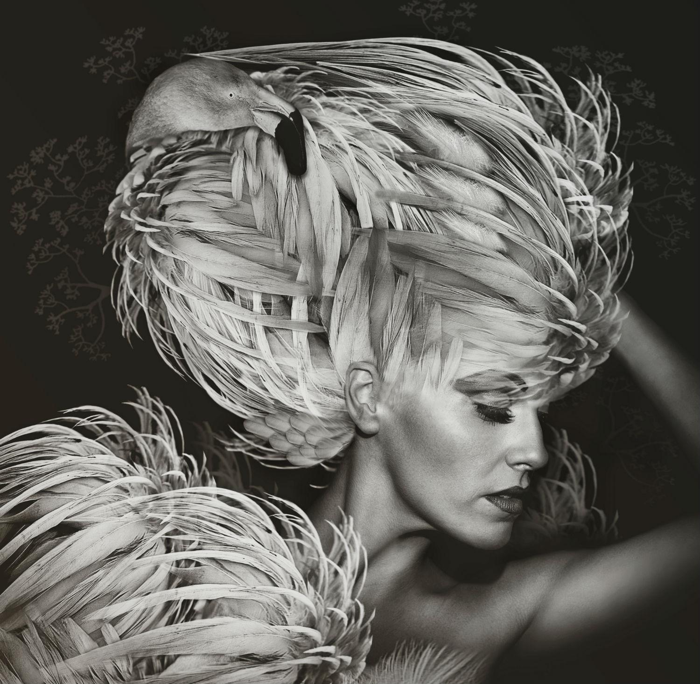 lee howell photography model black white silver costume bird