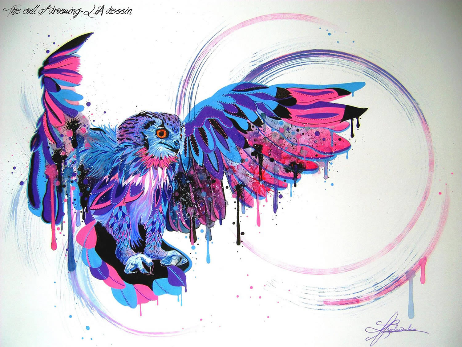 owl purple and pink by lorine angelmann